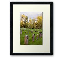 Rows of Rememberance  Framed Print
