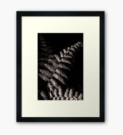 A Study in Harvesting Light Framed Print