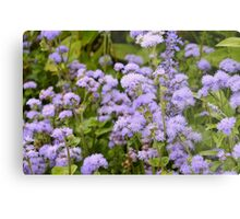 In the lovely violet fields we daydreamed and watched the clouds go by Metal Print