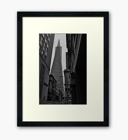 TransAmerica Pyramid, San Francisco, CA Framed Print