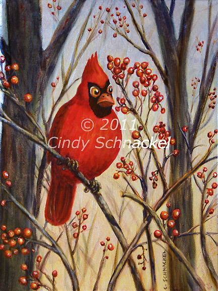 Cardinal by Cindy Schnackel