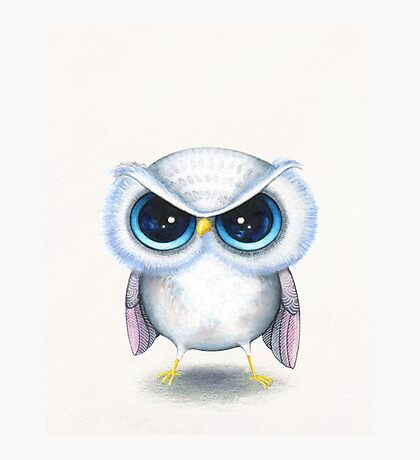 Grumpy Bird Photographic Print