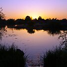 Gilbert Riparian Sunset by George Lenz