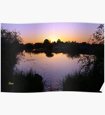 Gilbert Riparian Sunset Poster