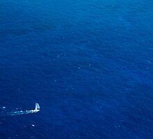 Alone in the Ocean by mikewheels