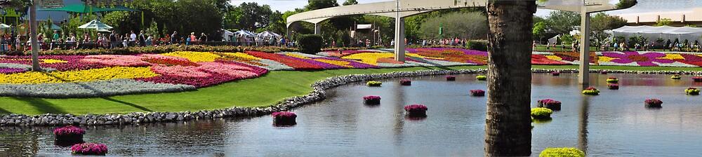 Epcot Flower and Garden Show  by John  Kapusta