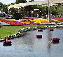 Epcot Flower and Garden Show  by John  Kapusta