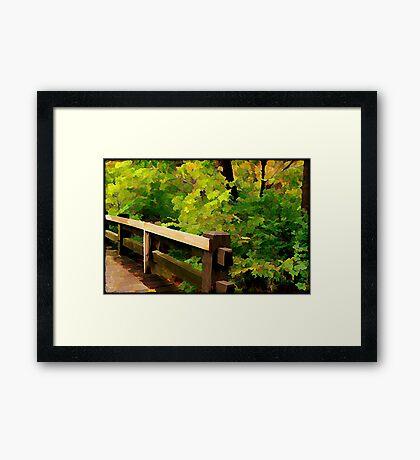 Nature Walk © Framed Print