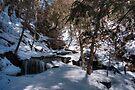Winter Shadows On Delaware Falls by Gene Walls