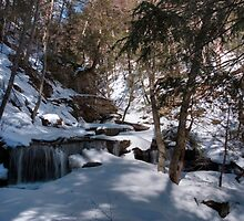 Winter Shadows On Delaware Falls by Gene Walls