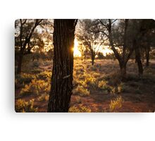 Sunset over desert landscape Canvas Print