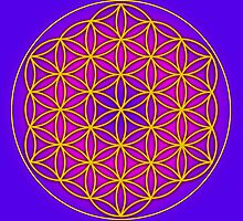 Flower of Life Sacred Geometry by haymelter
