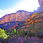 Sunrise in Boynton Canyon by John Butler
