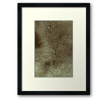 A Touch Of Serenity.... Framed Print