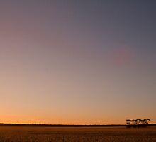 Australian farmland. by Kathy Behrendt