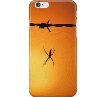 Spider at Sunrise iPhone Case/Skin