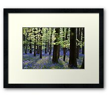 Travelling without moving Framed Print