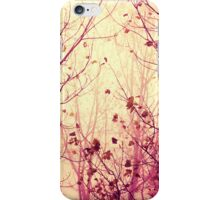 my secret garden iPhone Case/Skin