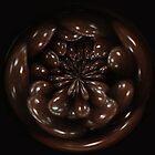 """""""Chocolate"""" by Gail Jones"""
