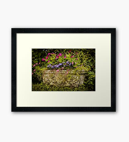 Garden Flower Planter Framed Print