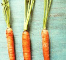 Three Carrots Sticker