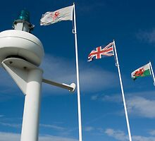 Cardiff Bay Flags by mlphoto