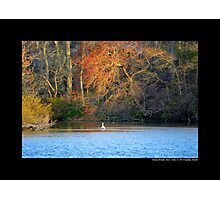 The Grist Mill Pond - Stony Brook, New York Photographic Print