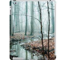 Winding Creek iPad Case/Skin