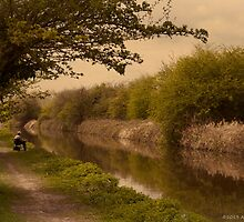 Fishing on the Trent and Mersey by David J Knight