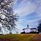Historic Church by Janice Carter