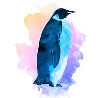 Solo Penguin by Kevin Halfhill