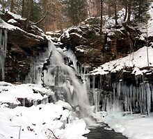 Winter's Deep Freeze Is Engulfing Ozone Falls by Gene Walls