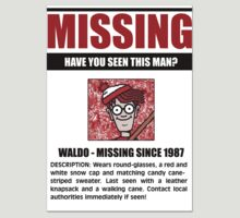 MISSING: Waldo by BNash2012