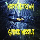 GUIDED MISSILE by DMEIERS