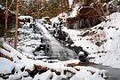 Fresh Snow at the F. L. Ricketts Waterfall by Gene Walls