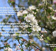 From the Last Words of David by Paula Tohline  Calhoun