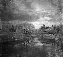Nestled Among Nature In Black N White by Crista Peacey