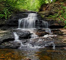 Onondaga Falls In Ricketts Glen by Gene Walls