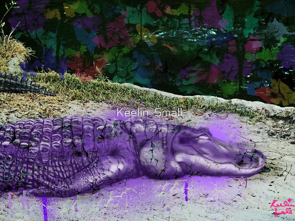urban alligator by Keelin  Small