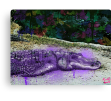 urban alligator Canvas Print