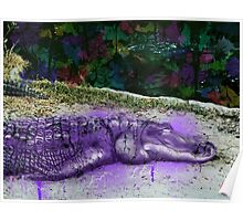 urban alligator Poster