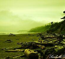 Green Beach Kalaloch by Sarah Ella Jonason