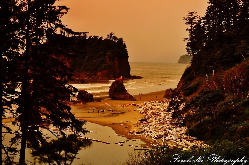 Ruby Beach by Sarah Ella Jonason