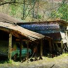 Old Car and Broken Shed by Ginger  Barritt