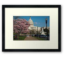 Capitol Cherry Framed Print