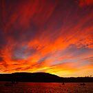 sunset, eastcoast style. bicheno, tasmania by tim buckley | bodhiimages
