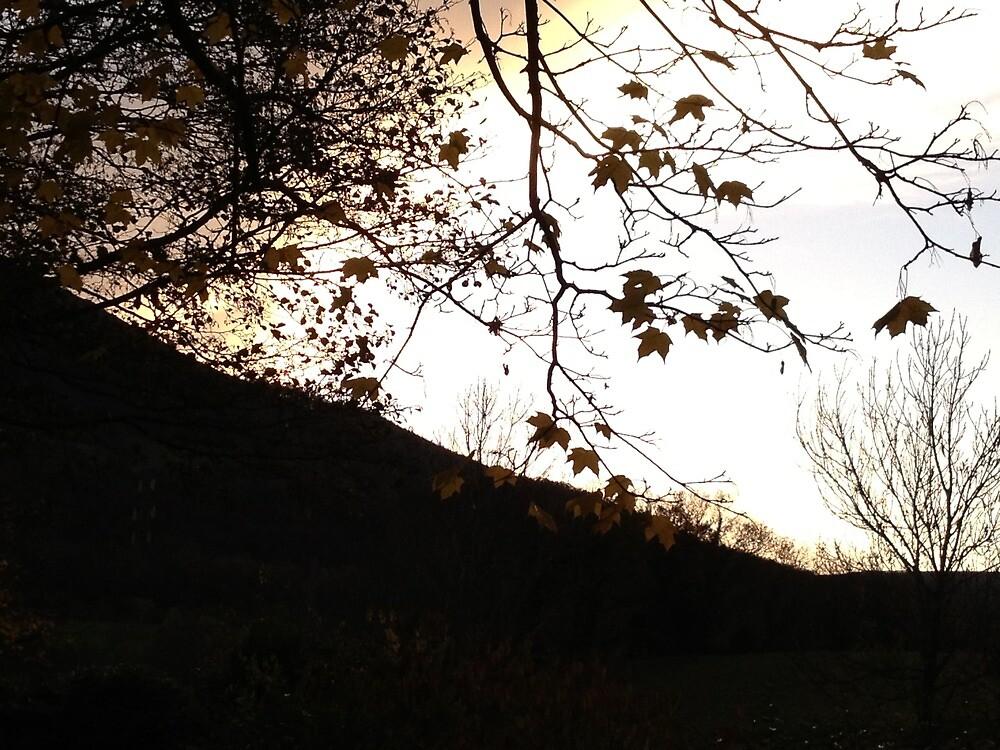 Welsh Countryside  by Arteaseum