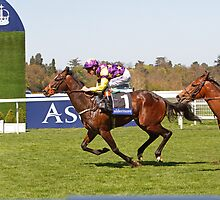 Anticipated  winning at Ascot 1st may 2013 by Keith Larby
