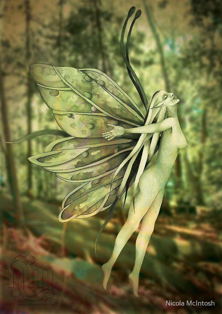 Surrender by Nicola McIntosh