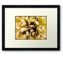 Artificial Flower Framed Print